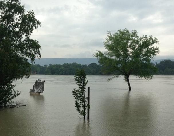 Full flood. Photo by Christopher Herring.